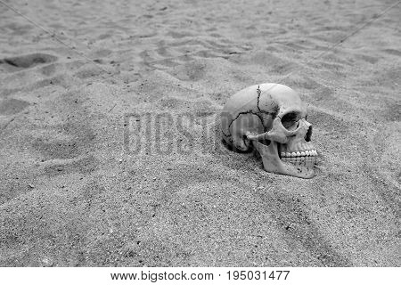 Skeleton remains buried by sand in the desert