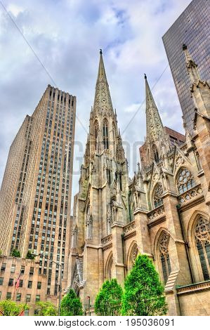 The Cathedral of St. Patrick in Manhattan - New York City, United States