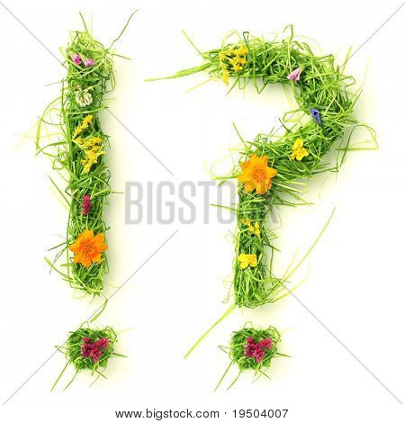 Question mark & exclamation mark made of flowers and grass isolated on white poster