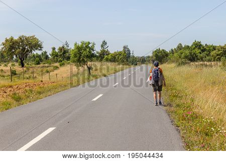 Girl hiking in road with cork trees in Vale Seco Santiago do Cacem Alentejo Portugal