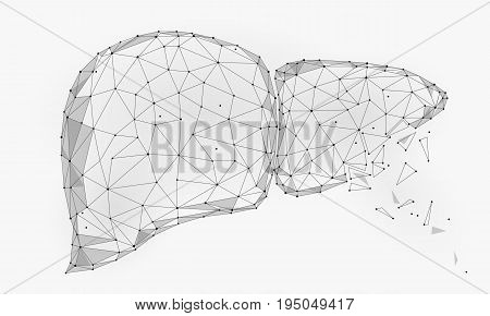 Treatment regeneration decay Human Liver Internal Organ Triangle Low Poly. Connected dots white gray color technology 3d model medicine healthy body part vector illustration art