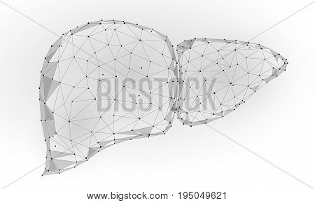 Human Liver Internal Organ Triangle Low Poly. Connected dots blue color technology 3d model medicine healthy body part vector illustration art
