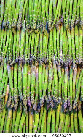 fresh asparagus at market