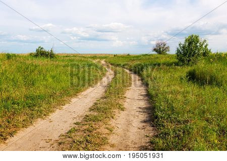 Country road in summer under clouds sky