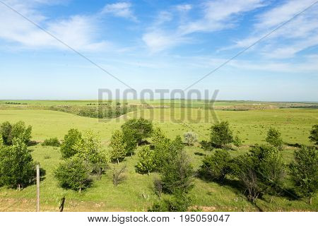 Nature in the steppe of Kazakhstan in the spring .