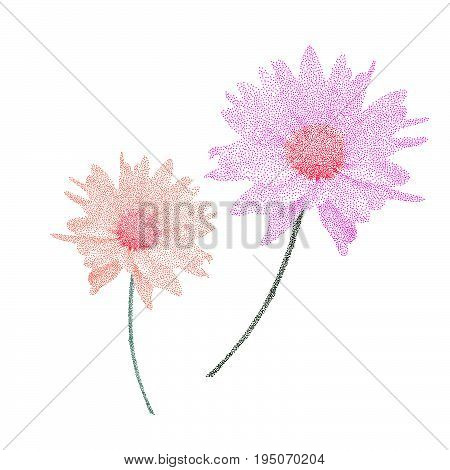 Botanic Garden Nature Colorful Stippling Isolated Vector Pink And Orange Flower