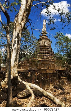 Wat Khao Suwankhiri temple tree pagoda and bright sky in Sisatchanalai Historical Park Sukhothai province Thailand
