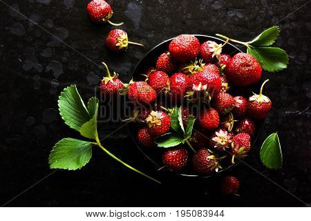 red strawberries in a black bowl against the dark background . Red on black.  red bowl strawberrie.  strawberrie.  strawberrie