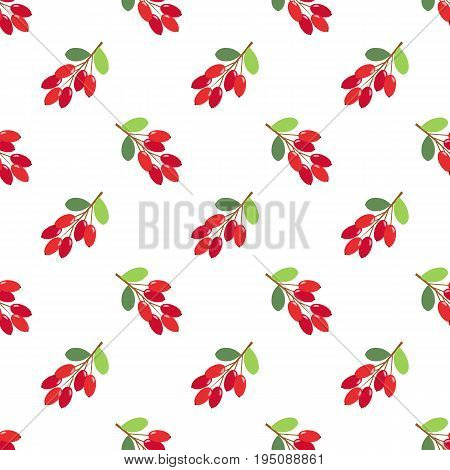 Seamless Background Image Colorful Tropical Fruit Barberry