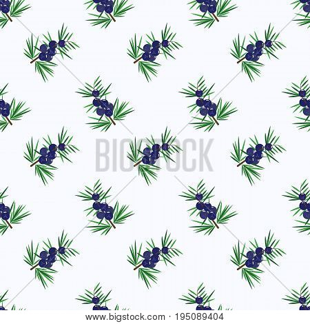 Seamless Background Image Colorful Tropical Fruit Juniper Berry