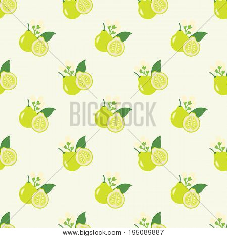 Seamless Background Image Colorful Tropical Fruit Pomelo