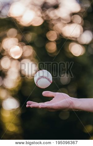 Baseball ball is tossed in the air. Cropped image of man catching baseball ball by hand.