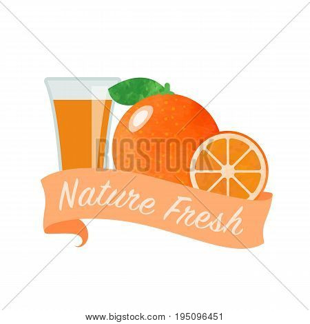 Colorful Watercolor Texture Vector Nature Organic Fresh Fruit Juice Banner Citrus Orange