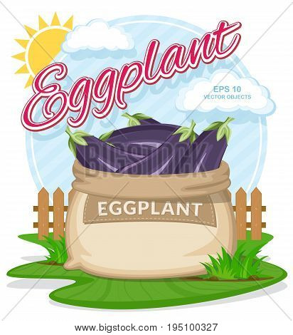 Vector illustration of eco products. Ripe Eggplant in burlap sack. Full sacks with fresh vegetables. Bag with harvest on the summer garden. Harvesting and food concept