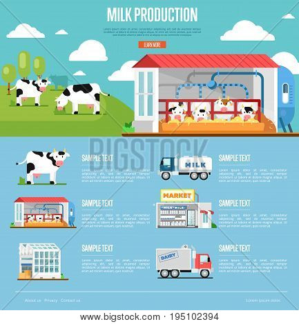 Milk production infographics. Modern cow farm, transportation and processing on milk factory, fresh and healthy dairy products distribution in market. Eco milk manufacturing vector illustration.
