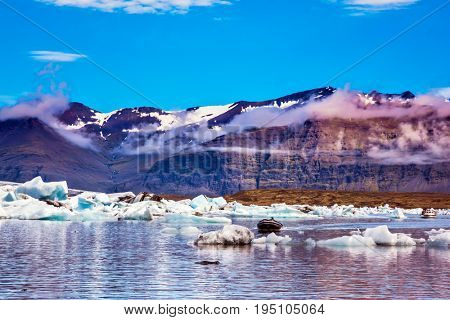 Ice floes are reflected in the smooth water surface. The concept of extreme northern tourism. Snow-capped mountains surround the Ice Lagoon, Iceland