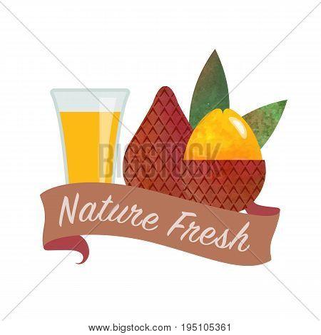 Colorful Watercolor Texture Vector Nature Organic Fresh Fruit Juice Banner Salak