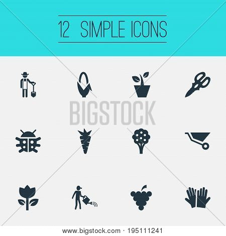 Vector Illustration Set Of Simple Gardening Icons. Elements Horticultural Gauntlet, Farmer, Blossom And Other Synonyms Grower, Shear And Garden.