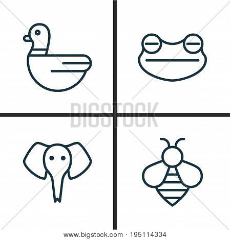 Zoology Icons Set. Collection Of Trunked Animal, Goose, Toad And Other Elements. Also Includes Symbols Such As Frog, Toad, Duck.
