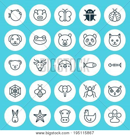 Nature Icons Set. Collection Of Diver, Grizzly, Ladybird And Other Elements. Also Includes Symbols Such As Pig, Globefish, Fowl.