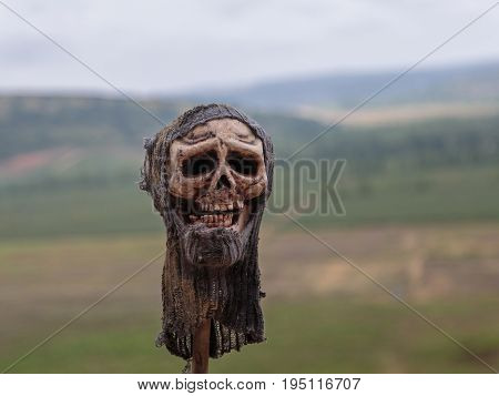 Human Skull with Worn Fabric Hat Outdoor on Thin Log