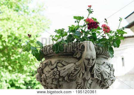 Ancient flower pot holder made from brute stone - very old sculpture with scarry face - gothic style