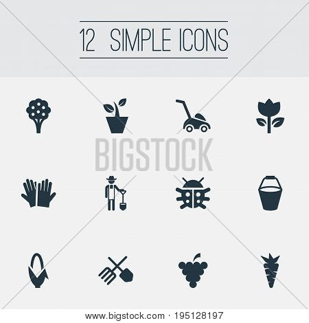 Vector Illustration Set Of Simple Gardening Icons. Elements Maize, Beetle, Horticultural Gauntlet And Other Synonyms Gardener, Machine And Gardening.
