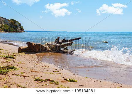 Black sea coast seascape with wood trunk on sand beach cliffs above azure water small wave splash blue sky.