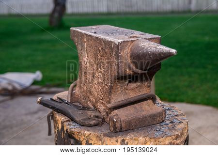 The Old Anvil Is On The Stump. Surrounded By A Beautiful Lawn, Summer Weather. Horizontal Frame