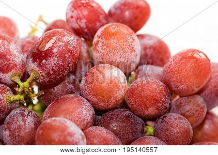 Ice cold red grapes. Organic food ingredient ready for making a healthy fruit smoothie. Nutritional refreshing summer drink preparation.