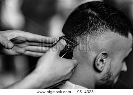 Hair Styling In The Salon, Black And Hite Image, Close Up