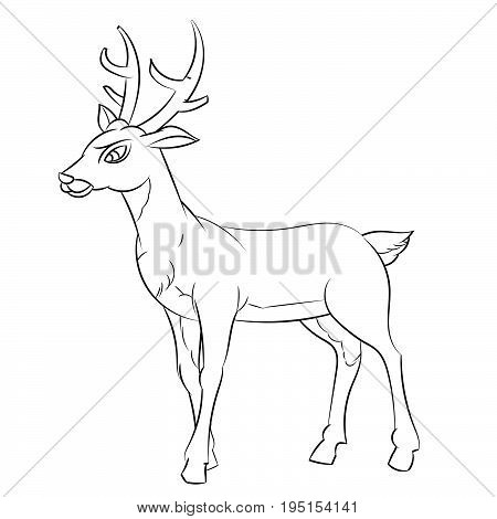 Hand drawn sketch of Deer Cartoon isolated Black and White Cartoon Vector Illustration for Coloring Book - Line Drawn Vecto