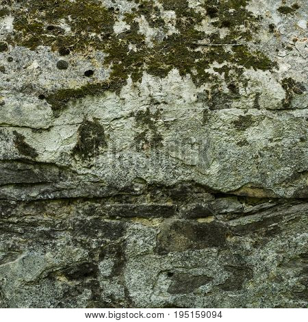 Old stone backgroungd. Aged stone surface for design. Texture of gray granite stone wall. Stone Texture with Moss and Lichen. Old brick wall background colors.