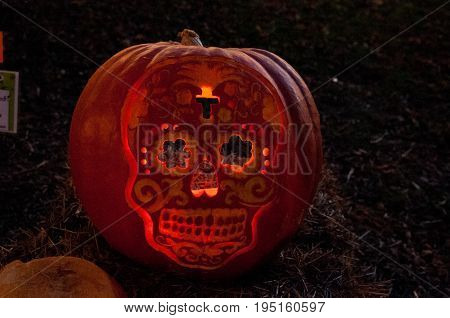 CHADDS FORD, PA - OCTOBER 26: View of Skull Pumpkin at The Great Pumpkin Carve carving contest on October 26, 2013