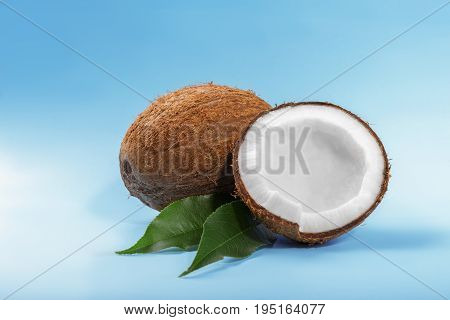 Close-up fresh cracked coconuts on a bright blue background. Beautiful delicious coconut and dark green leafs. Nutritious vegan diet. Exotic tropical nuts. Coconut cut in half.