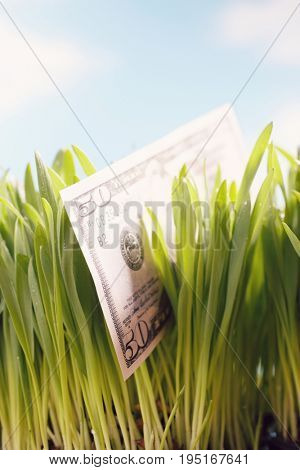 50-Dollar Bill in Grass