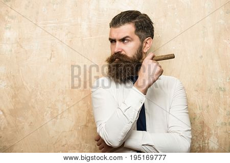 bearded man or hipster with long beard and stylish hair on serious face in tie and white shirt on textured beige background smoking cigar copy space