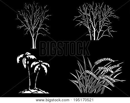 Set constructor from realistic white silhouettes isolated tropical palm trees, stack of wheat on a black background.