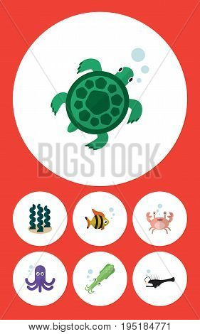 Flat Icon Sea Set Of Alga, Octopus, Seafood And Other Vector Objects. Also Includes Angler, Octopus, Crab Elements.
