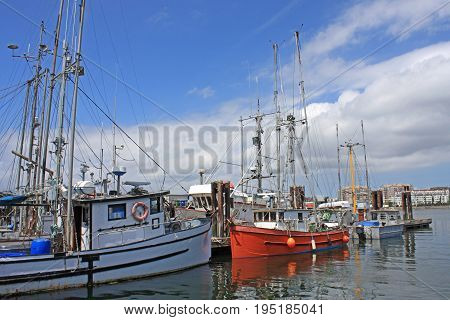 Fishing boats in Victoria harbor on Vancouver Island
