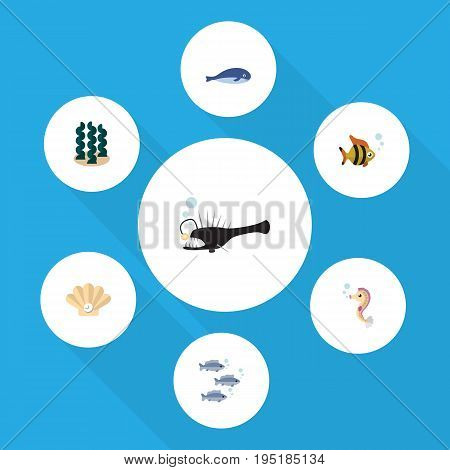 Flat Icon Marine Set Of Cachalot, Conch, Fish And Other Vector Objects. Also Includes Seashell, Humpback, Alga Elements.