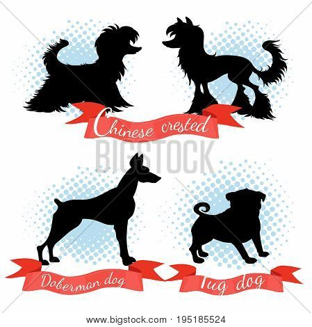Silhouette different dog breeds set. Chinese crested and powder puff pug dog doberman.
