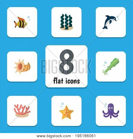 Flat Icon Nature Set Of Algae, Alga, Seafood And Other Vector Objects. Also Includes Alga, Tuna, Squid Elements.