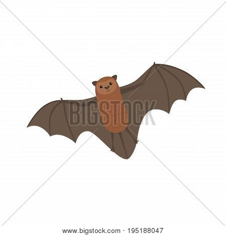 Cute long tailed bat isolated on white background vector Illustration