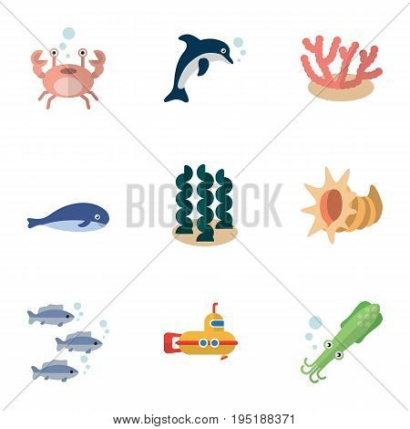 Flat Icon Nature Set Of Alga, Playful Fish, Periscope And Other Vector Objects. Also Includes Algae, Octopus, Lobster Elements.