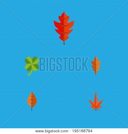 Flat Icon Leaf Set Of Foliage, Frond, Linden And Other Vector Objects. Also Includes Frond, Aspen, Hickory Elements.