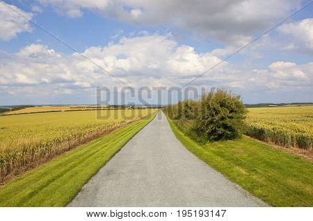 Scenic Farm Road