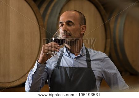 Winemaker smelling a glass of red wine in a cellar surrounded by wooden barrels. Professional mature man smelling red wine in glass with closed eyes in a wine cellar. Sommelier inspecting wine.
