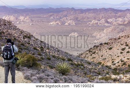 Views from Ryan Mountain. Joshua Tree National Park, California, USA.