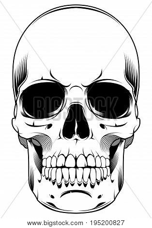 Skull design element isolated on white background